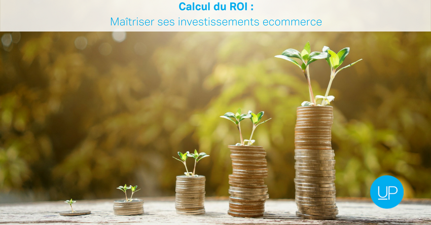 calcul ROI ecommerce