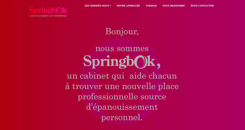 fiche client springbok up my biz 1