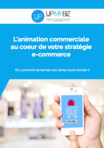 lb animation commerciale strategie ecommerce